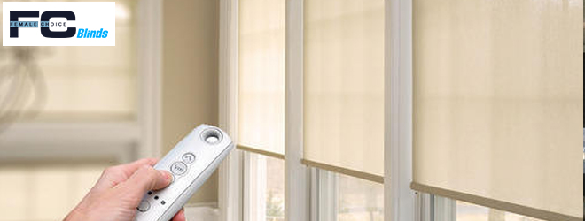 Motorized Blinds Bena